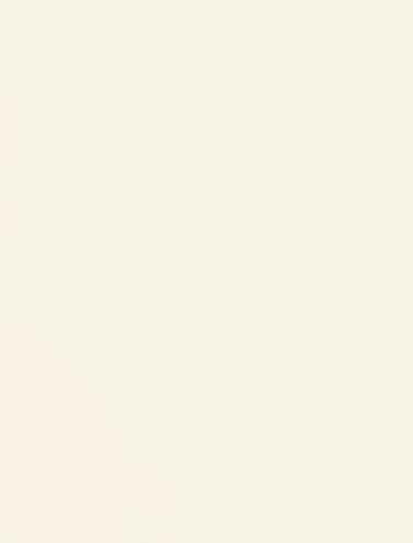 173 Fashion Лак, матовый, белый